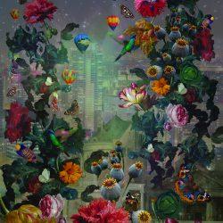 پوستر کاغذ دیواری تخفیف خورده هلندی با برند بی ان از آلبوم داتچ مستر با کد 30724